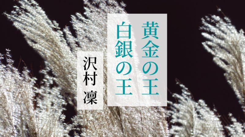 沢村凛『黄金の王 白銀の王』